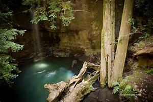 Photo: Sempervirens Falls. Big Basin Redwood State Park ...