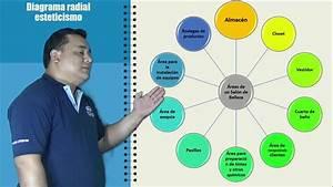 Diagrama Radial Metodologia
