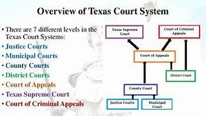 United States  U0026 Texas Court Systems Notes For Law
