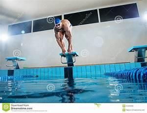 Pool Position : swimmer standing on starting block stock photo image of ~ A.2002-acura-tl-radio.info Haus und Dekorationen