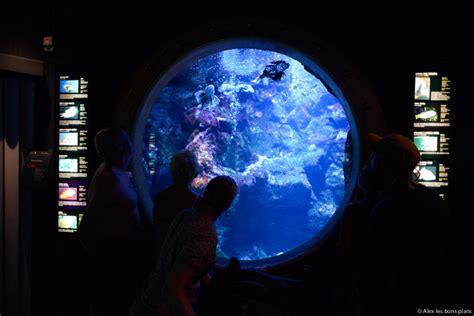 horaire aquarium de aquarium gilles horaires l aquarium de gilles les bains les bons plans l aquarium