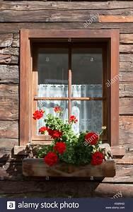 Länge Gardinen Fensterbank : window with net curtains stockfotos window with net curtains bilder alamy ~ Watch28wear.com Haus und Dekorationen