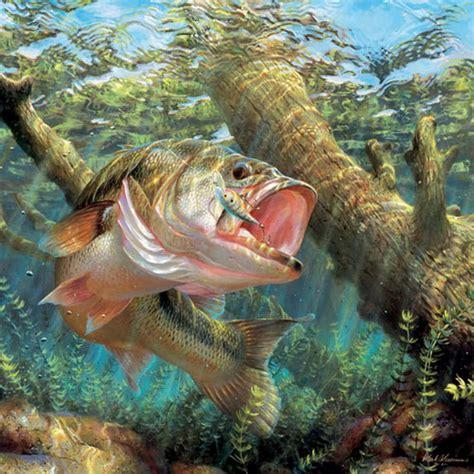 Free Largemouth Bass Wallpapers Wallpaper Cave HD Wallpapers Download Free Images Wallpaper [1000image.com]