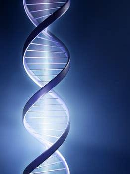 biological factors related   development