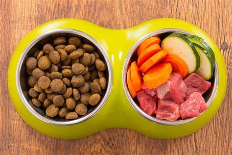 farm  fidos bowl    homemade dog food