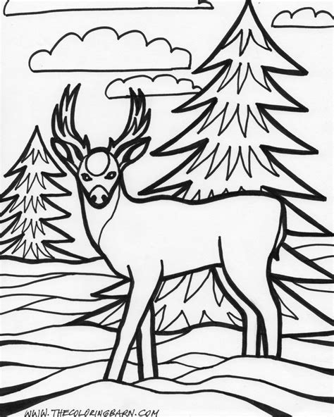 coloring pages of animals animal coloring pages bestofcoloring
