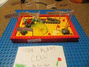 3D Plant Cell Model Project