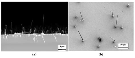not shabby hillsdale nanomaterials free text bi 28 images nanomaterials free full text bi component