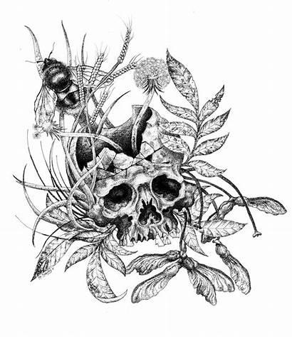 Skull Weeds Deviantart Drawings Bee Ink Pen