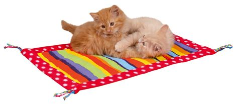 tapis de jeu pour chat jouets pour chaton tapis pour chat jouets pour chat meganimo