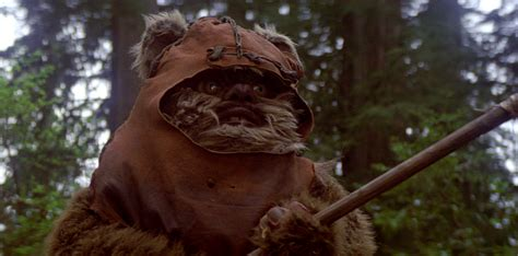 wicket  warrick encyclopedie star wars universe