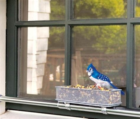 Windowsill Bird Feeder by Windowsill Bird Feeder Diy Made With Tension Curtain Rod
