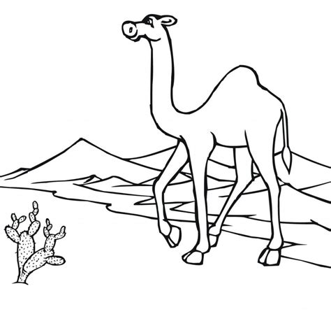 Coloring Foto by Desert Coloring Pages Best Coloring Pages For