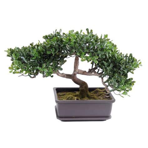 pot bonsai pas cher plante verte d int 233 rieur pas cher fleurs plantes artificielles