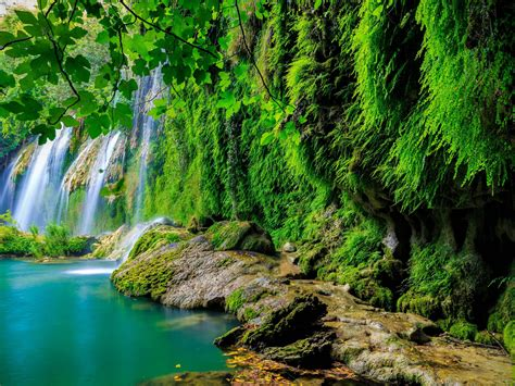 green tropical forest waterfall lake landscape nature