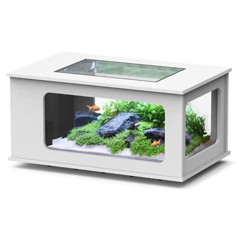 vente d aquarium pas cher 28 images aquarium cubique blanc et noir achat vente aquarium
