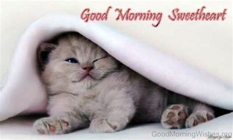 Cute Morning Wallpaper  Wallpaper Images