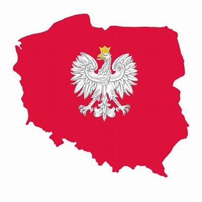 Poland Vector Polish Illustration Eagle Clip Centennial