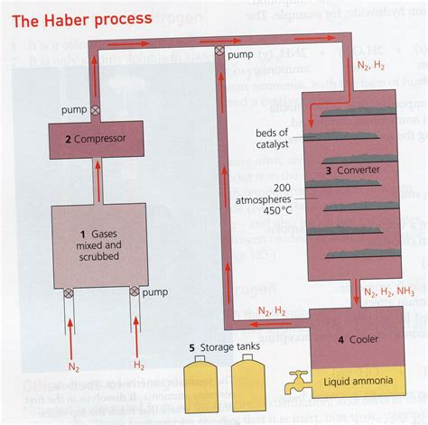 the process the steps the haber bosch process