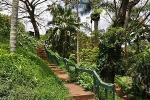 National botanical gardens lawai kauai hawai39i for Botanical gardens kauai