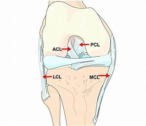 Acl Answers From A Vail Knee Doctor  Acl Injuries  Surgery