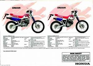 Free Xr650r Service Manual  Software Free Download