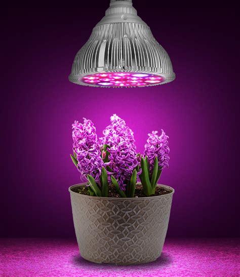 best grow lights for seedlings best grow lights growing lettuce indoors best types of