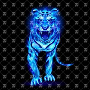 Blue fire tiger on black background, Plants and Animals ...