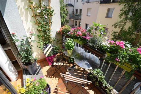 terrazze in fiore fiori per terrazzi piante da terrazzo quali fiori per