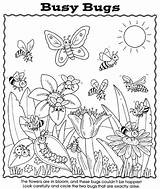 Coloring Bugs Bug Preschool Sheets Worksheet Activity Nature Insect Printable Spider Dover Publications Puzzle Busy Coloriage Insects Colouring Hidden Matching sketch template