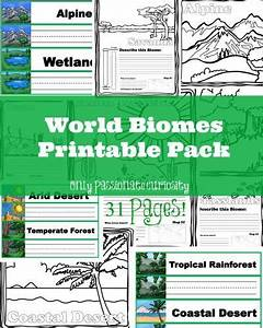 25 Best Ideas About Biomes On Pinterest Ecosystems