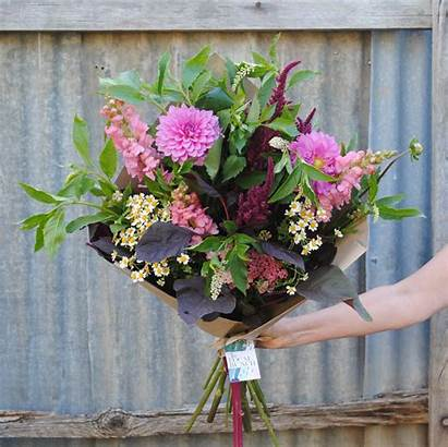 Flowers Bunch Bunches Preorder Local