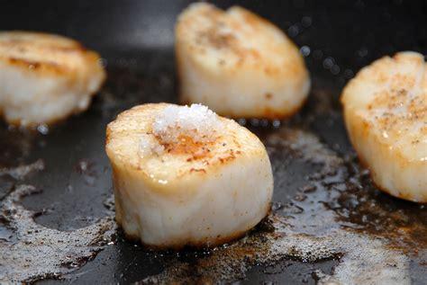 cuisiner coquilles jacques recette de carpaccio de coquille jacques