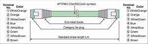 Category 5e Cable  Stranded Wire  Tpmc