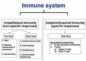 Innate Immunity (Nonspecific Host Defences) at Mount ...