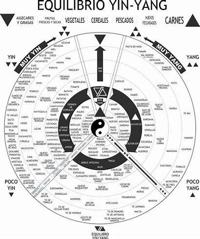 Yang Yin Equilibrio Ying Cycle Vector Clip