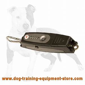 dogs 101 doberman dog training sound devices With dog training devices