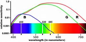 Wavelength Sensitivity of Cones