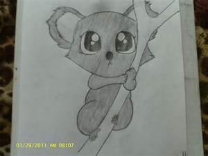 How To Draw A Baby Koala   www.imgkid.com - The Image Kid ...
