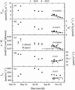 The Model Simulated Maximum Net Photosynthetic Rates  P