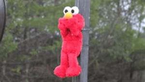 Elmo Burning GIF - Find & Share on GIPHY