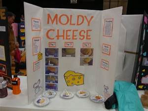 the cheese is old and moldy where is the bathroom 28 With the cheese is old and moldy where is the bathroom