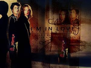 Harry and Hermione - Harry and Hermione Wallpaper (6893554 ...