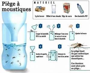Fabriquer Un Piege A Guepes : fabriquer un pi ge moustiques et mouches grands ~ Melissatoandfro.com Idées de Décoration