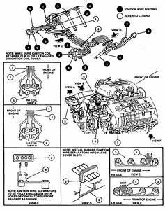 96 Ford Ranger Spark Plug Wiring Diagram  96  Free Engine