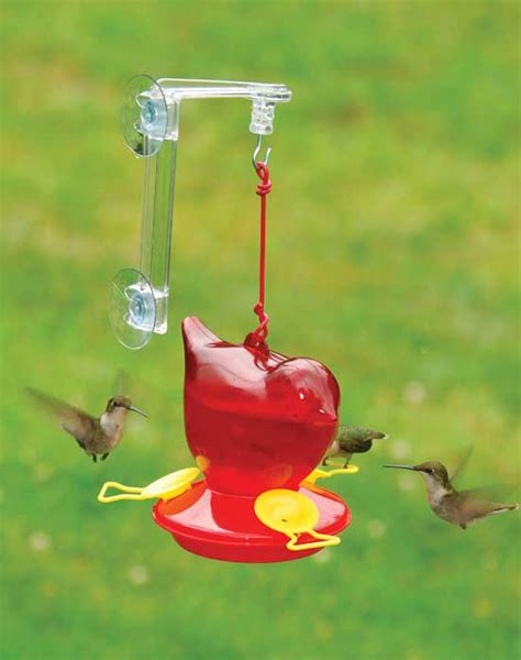 when to hang hummingbird feeders red bird window hummingbird feeder hang it from your window