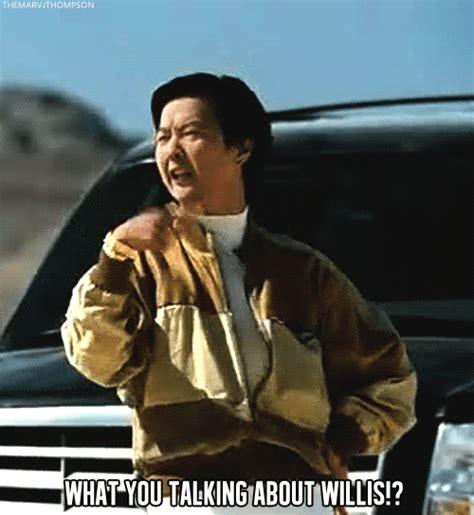 Mr Chow Memes - mr chow on tumblr