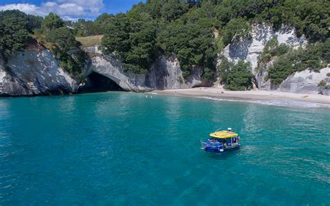 Glass Bottom Boat Tours Nz by Glass Bottom Boat Whitianga Activities And Tours In The