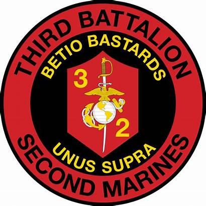 Marine Battalion Marines Corps Usmc 2nd 3rd