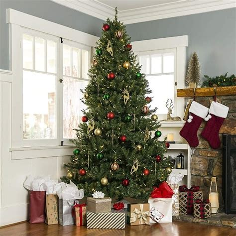 best price real christmas tree 15 best trees 2019 that look real absolute
